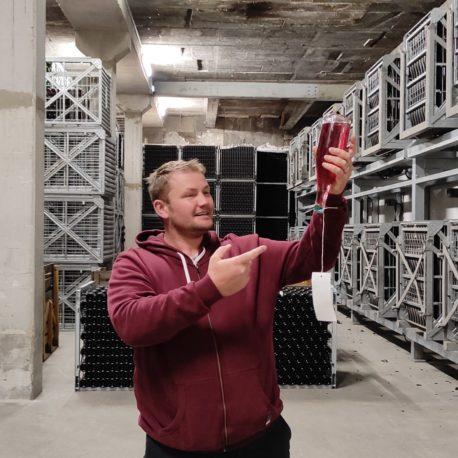 Besuch eines Champagnerkellers in der Nähe von Troyes Champagner direkt vom Hersteller